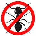 Защита от муравьев